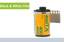 Black and White Film Developing and Printing
